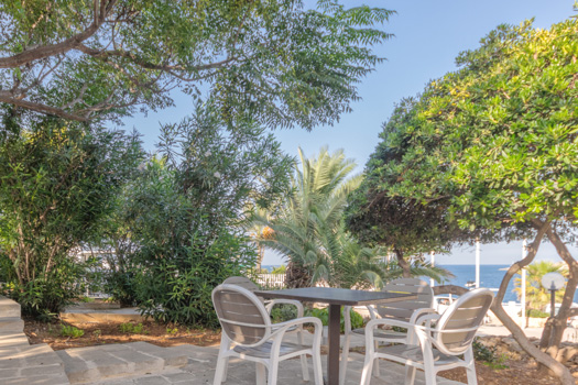 AX Sunny Coast Resort and Spa - Garden